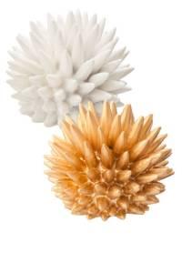 Nate Berkus Urchins